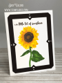 2020/07/23/Kitchen_Sink-Giant-sunflower-flowers-flowers-gardening-multi-step-stamping-birthday-get-well-sunny-smile-friend-stampladee-deb-valder-teaspoon_of_fun_by_djlab.PNG