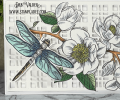 2021/04/20/slimline-spring-magnolia-card-kit-trellis-cover-plate-color-layering-dragonfly-combo-flowers-welcome-Teaspoon-of-Fun-Deb-Valder-IO-Stamps-LDRS-Tutti-Hero-Arts-2_by_djlab.PNG
