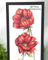 2021/05/11/Slimline-Anemone-Stacked-you-are-so-special-flower-copic-coloring-Teaspoon-of-Fun-Deb-Valder-IO-stamps-creative-expressions-3_by_djlab.PNG