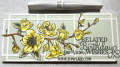 2021/07/27/spring-magnolia-kit-belated-birthday_wishes-happy-slimline-connected-rectangles-die-wink-stella-Teaspoon-of-Fun-Deb-Valder-Whimsy-Stamps-IO-Creative-Expressions-1_by_djlab.PNG