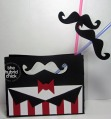 stachebox_