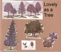 2006/07/10/DG_lovely_as_a_tree_Index_by_Dorinda.png