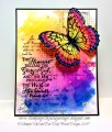 2017/07/18/071817_RRCB67_Rainbow_Butterfly_FV_by_Julie_Gearinger.jpg