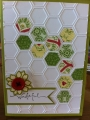2013/05/08/CASology43_Hexagons2_by_tinstar.JPG