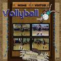 2010/09/10/Bee_s_vollyball_game_2_by_taca410.jpg