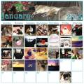 2013/01/26/MyJanCalendar_by_tygerpaws11.jpg