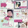 2015/01/31/daytoday_journalcard_layout_by_Mary_Fran_NWC.jpg
