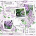 2015/06/29/lilacblossoms_layout_by_Mary_Fran_NWC.jpg