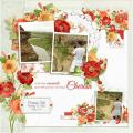2015/07/25/poppies_layout_by_Mary_Fran_NWC.jpg