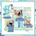 2016/05/21/babysfirstsboy_layout_by_Mary_Fran_NWC.jpg