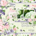 2017/04/16/birdsong_layout_by_Mary_Fran_NWC.jpg