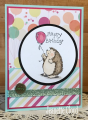 2017/12/18/UI_Hedgehog_Birthday_1_by_Forest_Ranger.png